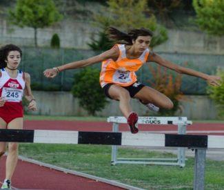 Trofeo Coni, a Senigallia il festival nazionale dello sport dedicato ai giovani