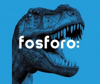 Fosforo Senigallia – la festa della scienza!