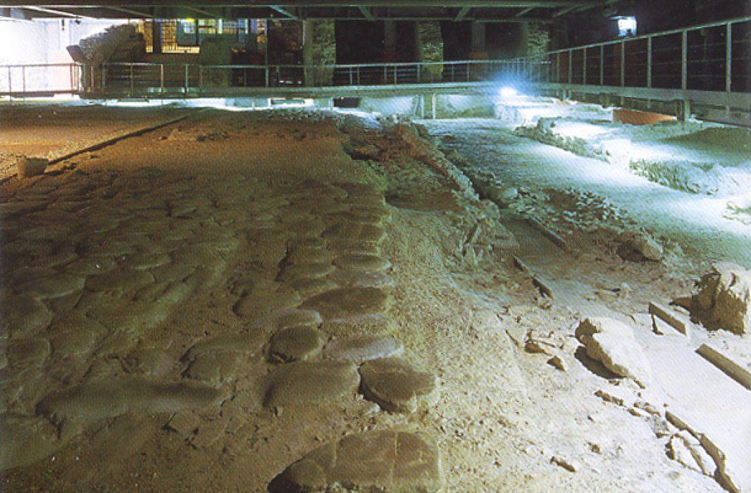 "Area archeologica e Museo ""La Fenice"""